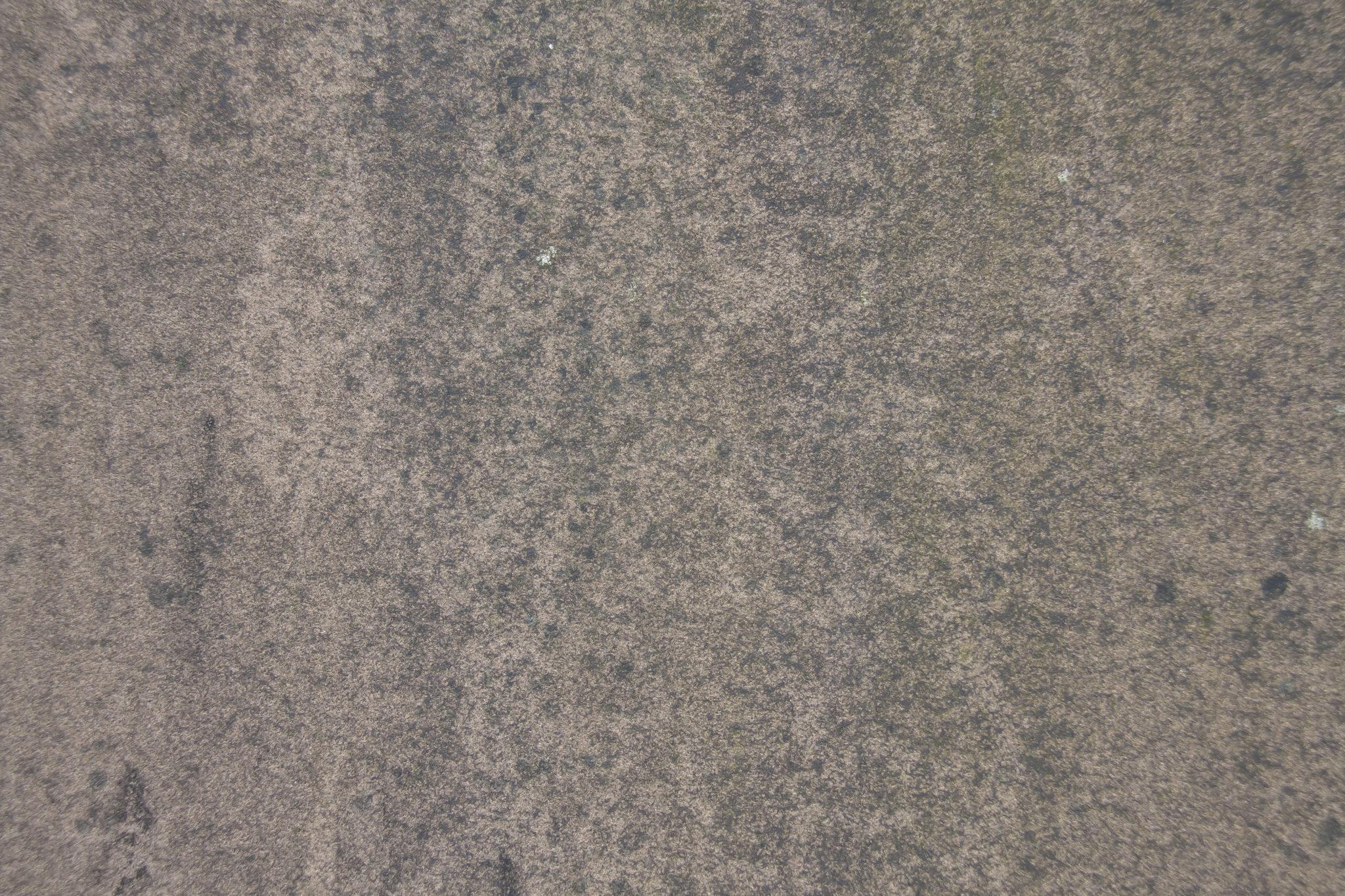 free photoshop textures stone texture