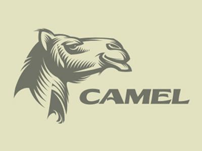 yuri galitsyn camel