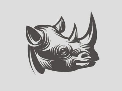 yuri galitsyn rhino